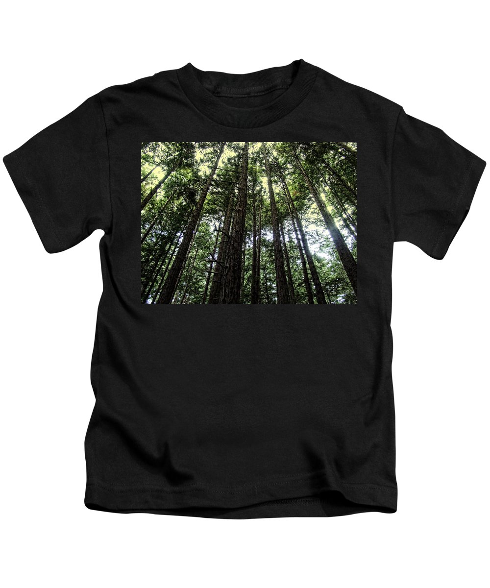 Trees Kids T-Shirt featuring the photograph Up Through The Trees by Alice Gipson