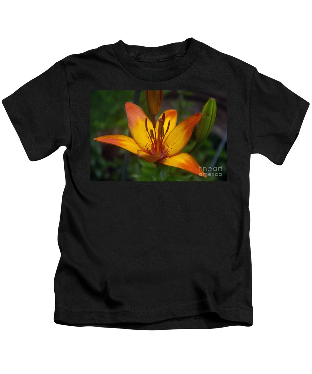 Orange Kids T-Shirt featuring the photograph Variegated Lily by Ray Konopaske