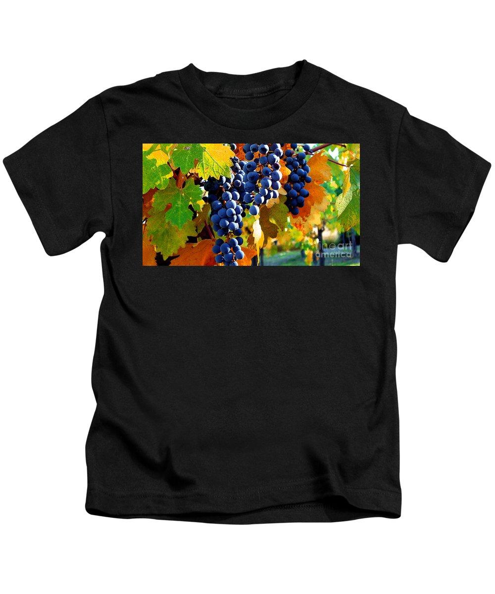Autumn Kids T-Shirt featuring the photograph Vineyard 2 by Xueling Zou