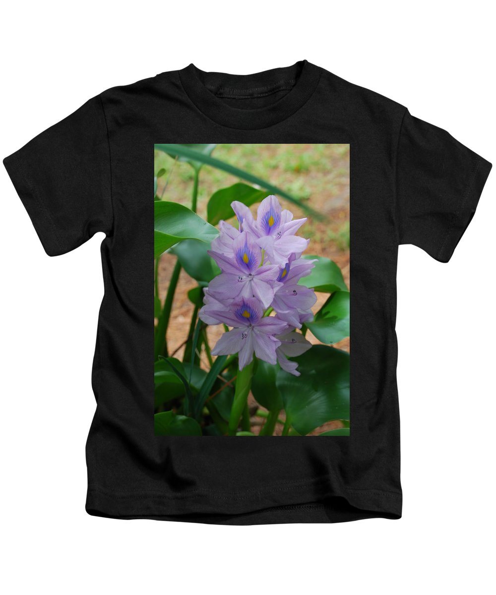 Pond Flower Kids T-Shirt featuring the photograph Water Hyacinth by Robert Floyd