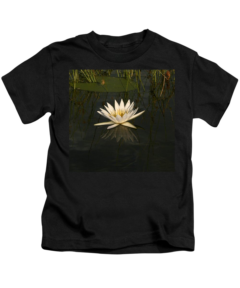 Karen Zuk Rosenblatt Art And Photography Kids T-Shirt featuring the photograph Waterlilly 5 by Karen Zuk Rosenblatt