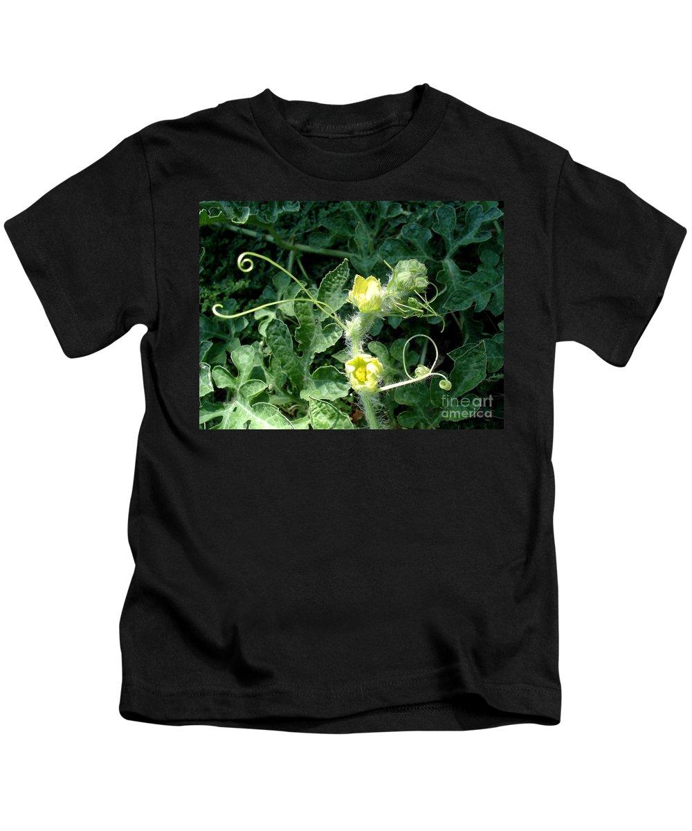 Watermelon Kids T-Shirt featuring the photograph Watermelon Flowers And Vine by Kerri Mortenson