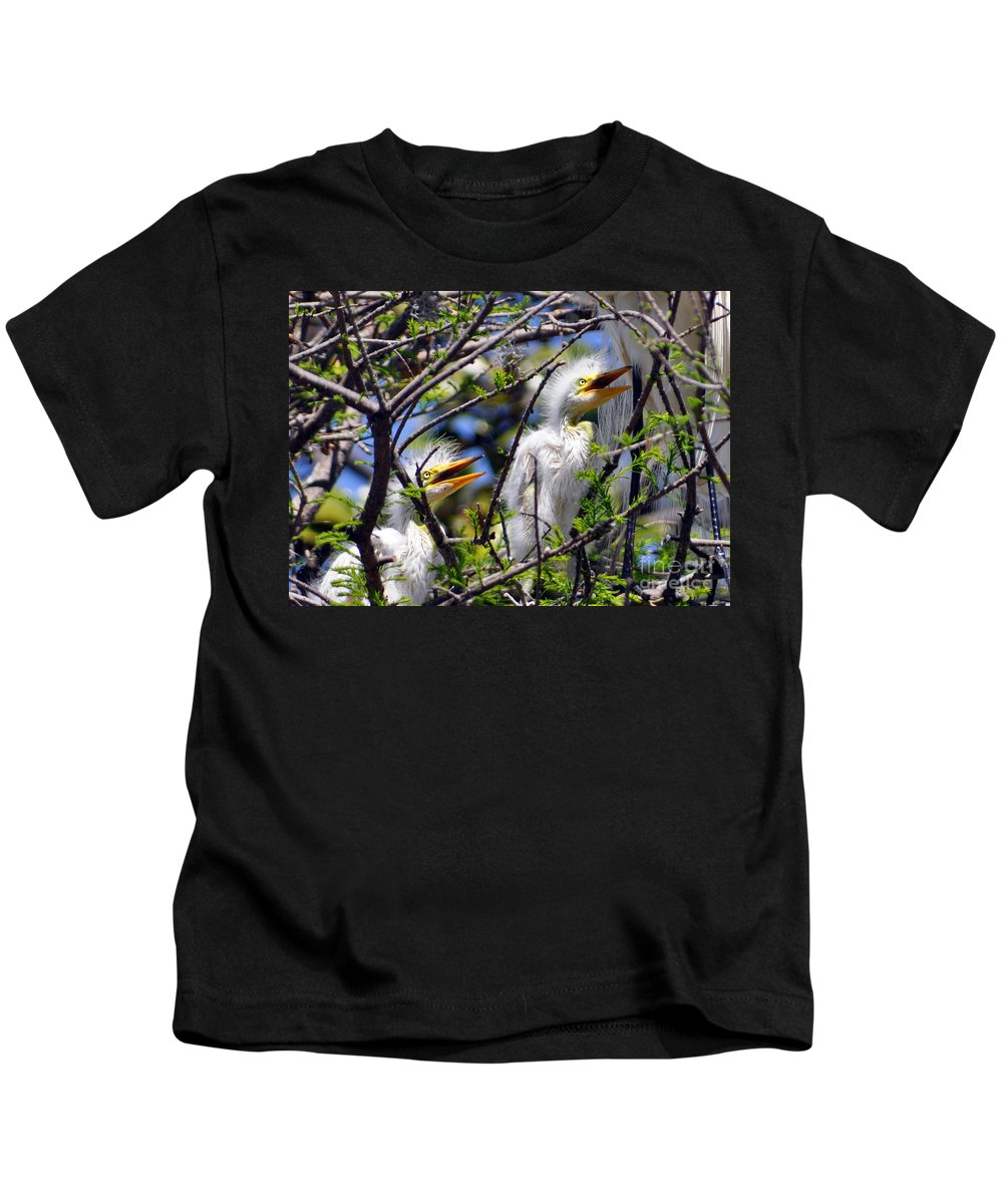 Egret Chicks Kids T-Shirt featuring the photograph We Love You Mama by Lydia Holly