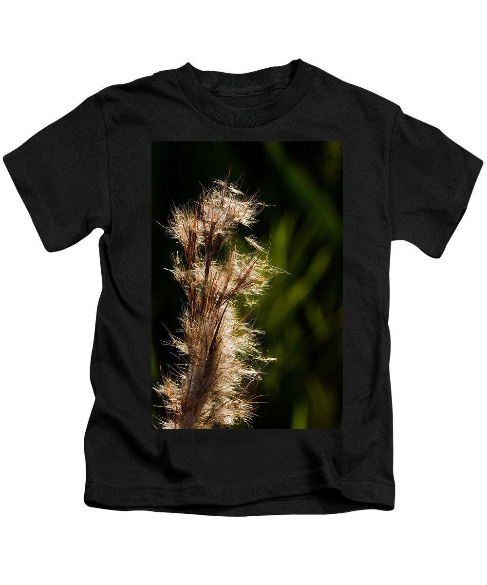 Aqauatic Kids T-Shirt featuring the photograph Wetland Sparkles by Ed Gleichman