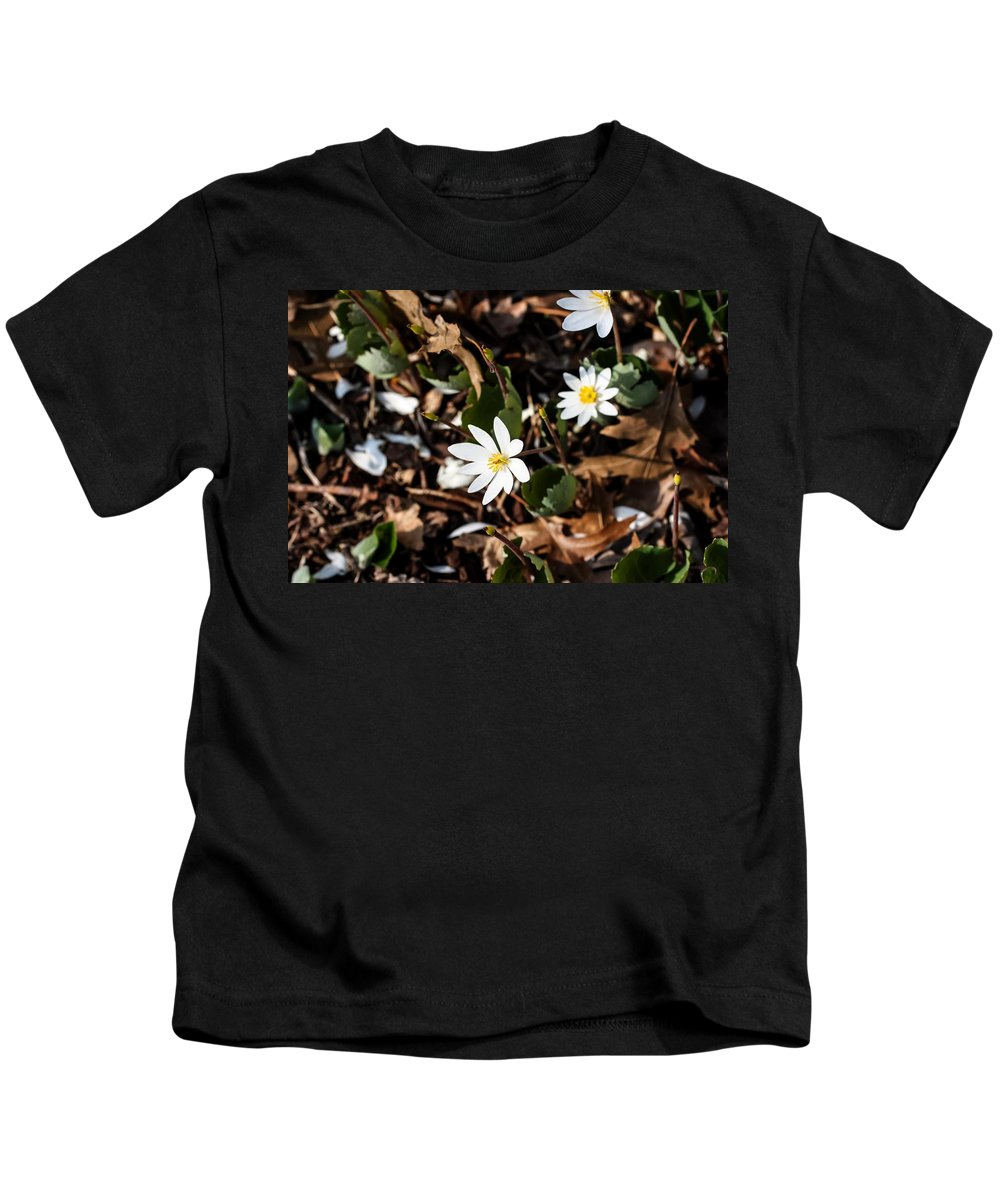 White Bloodroot Kids T-Shirt featuring the photograph White Bloodroot by Cynthia Woods