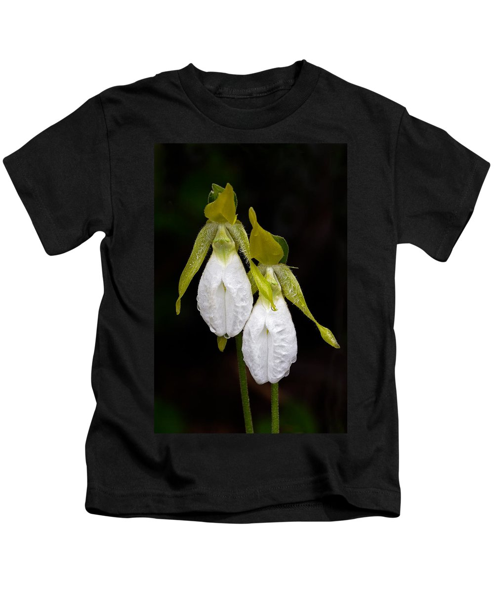 Baxter State Park Kids T-Shirt featuring the photograph White Lady's Slipper Pair by Stephen Gingold