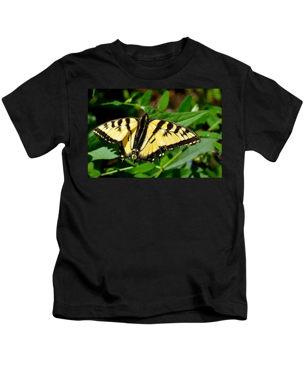 Butterfly Kids T-Shirt featuring the photograph Wild Butterfly by Stephanie Bland