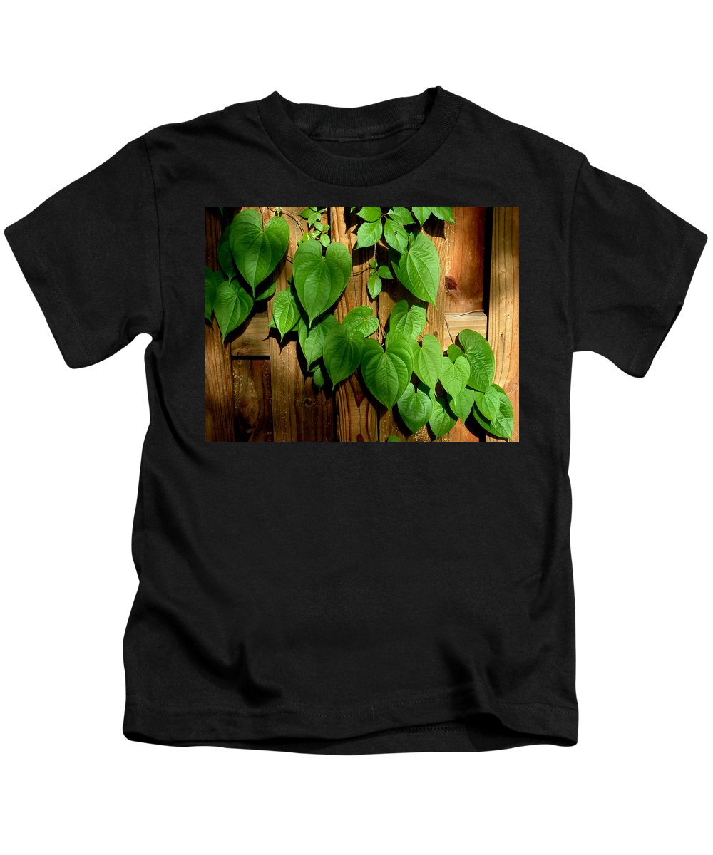 Leaf Kids T-Shirt featuring the photograph Wild Potato Vine 2 by David Weeks