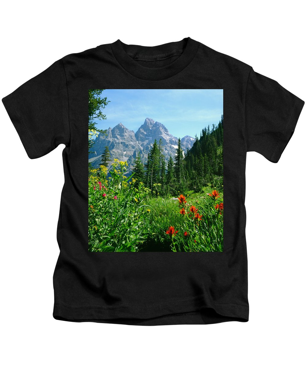 Cascade Canyon Kids T-Shirt featuring the photograph 1m9372-v-wildflowers In Cascade Canyon, Tetons by Ed Cooper Photography