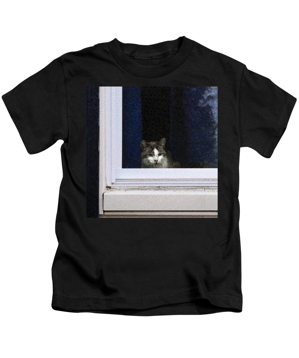 Cat Kids T-Shirt featuring the photograph Window Cat by David Stone