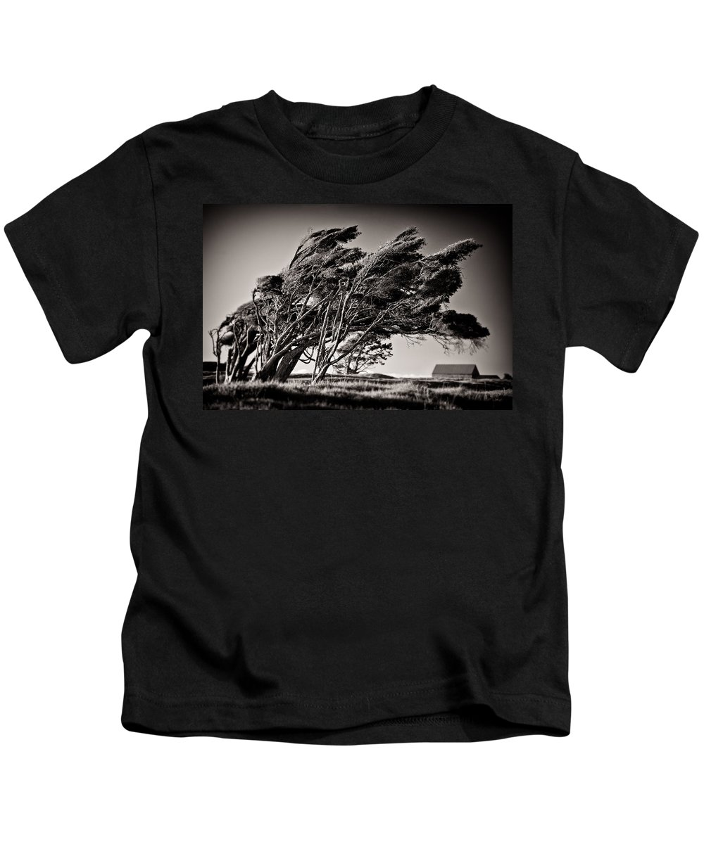 Windswept Trees Kids T-Shirt featuring the photograph Windswept by Dave Bowman
