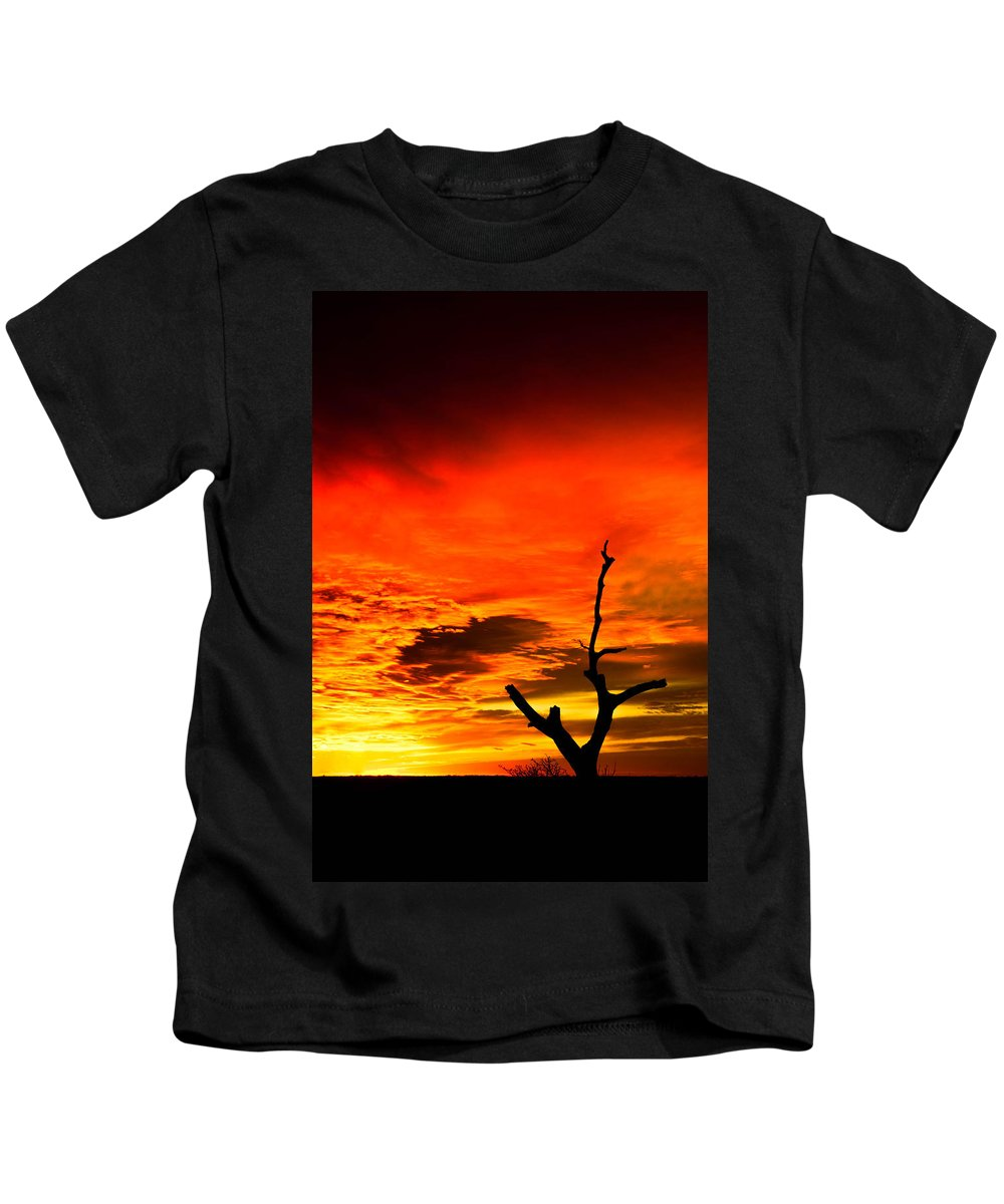 Tree Kids T-Shirt featuring the photograph Winter Sunset by Ryan Dove
