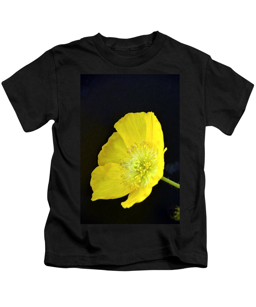 Yellow Kids T-Shirt featuring the photograph Yellow Glory by Randy J Heath