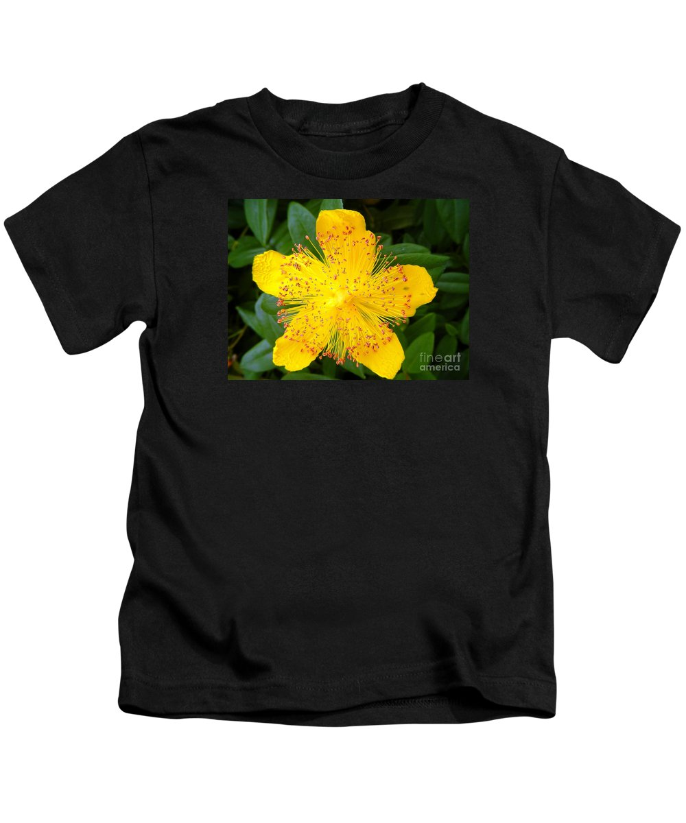 Floral Kids T-Shirt featuring the photograph Yellow Lady Pins by Loreta Mickiene