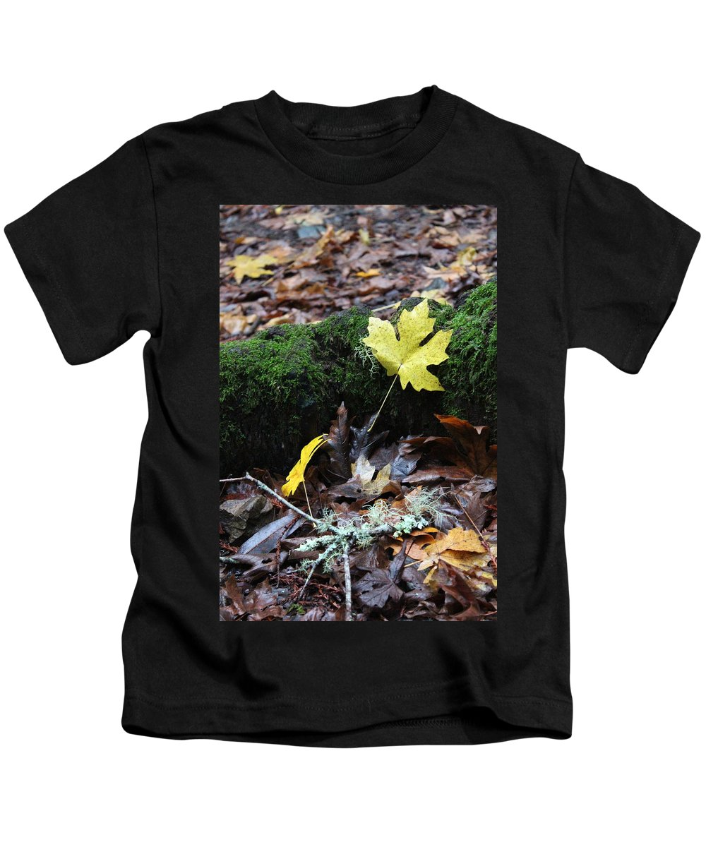 California Kids T-Shirt featuring the photograph Yellow Leaf by Nicholas Miller