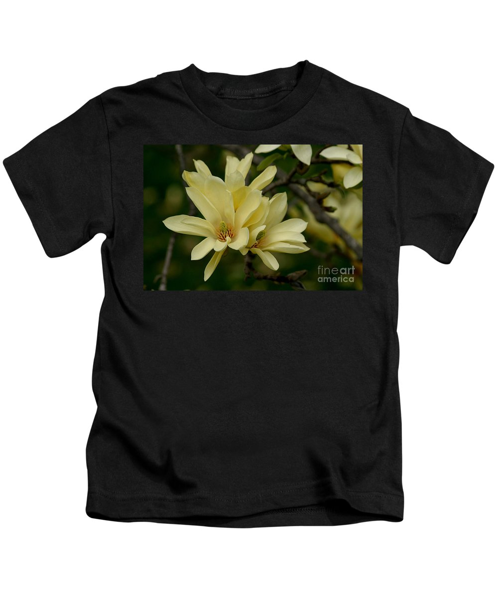 Magnolia Kids T-Shirt featuring the photograph Yellow Magnolia by Living Color Photography Lorraine Lynch