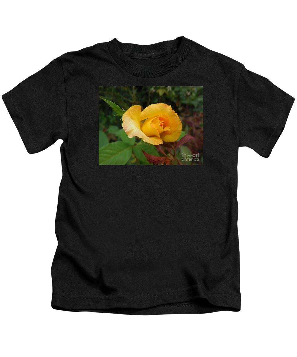 Online Kids T-Shirt featuring the photograph Yellow Rose Of Texas by Eloise Schneider Mote