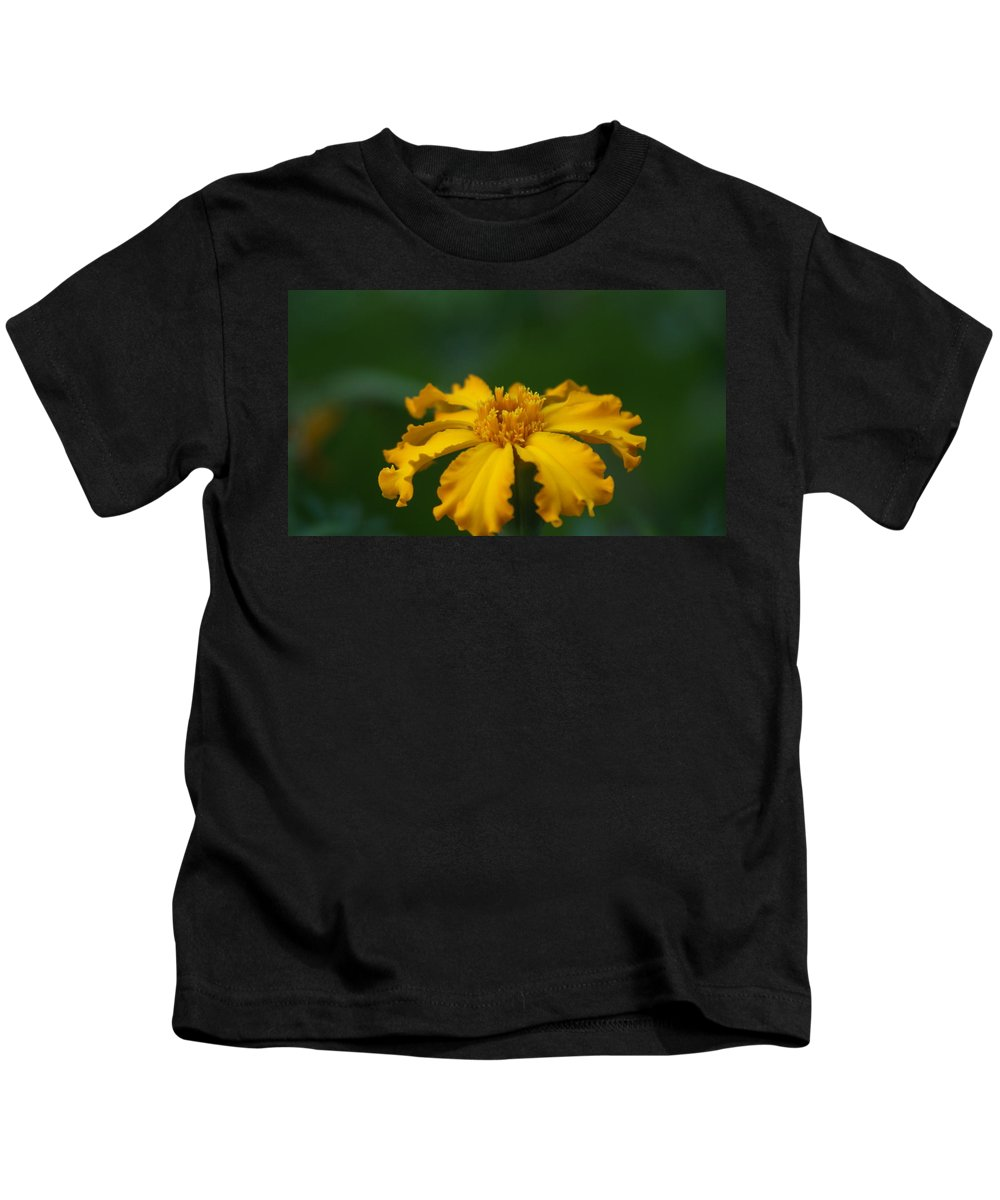 Yellow Kids T-Shirt featuring the photograph Yellow Sun Burst...  # by Rob Luzier