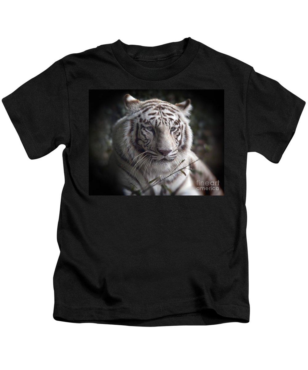 The Tiger's Watchful Eye The Tiger's Watchful Eye The Tiger's Watchful Eye Kids T-Shirt featuring the photograph The Tiger's Watchful Eye by Heinz G Mielke