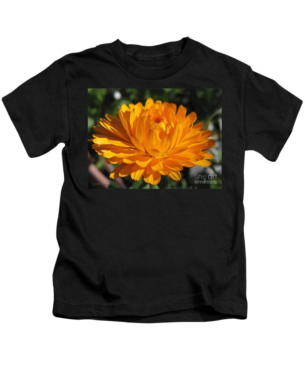 Calendula Kids T-Shirt featuring the photograph Calendula Named Bon-bon Orange by J McCombie