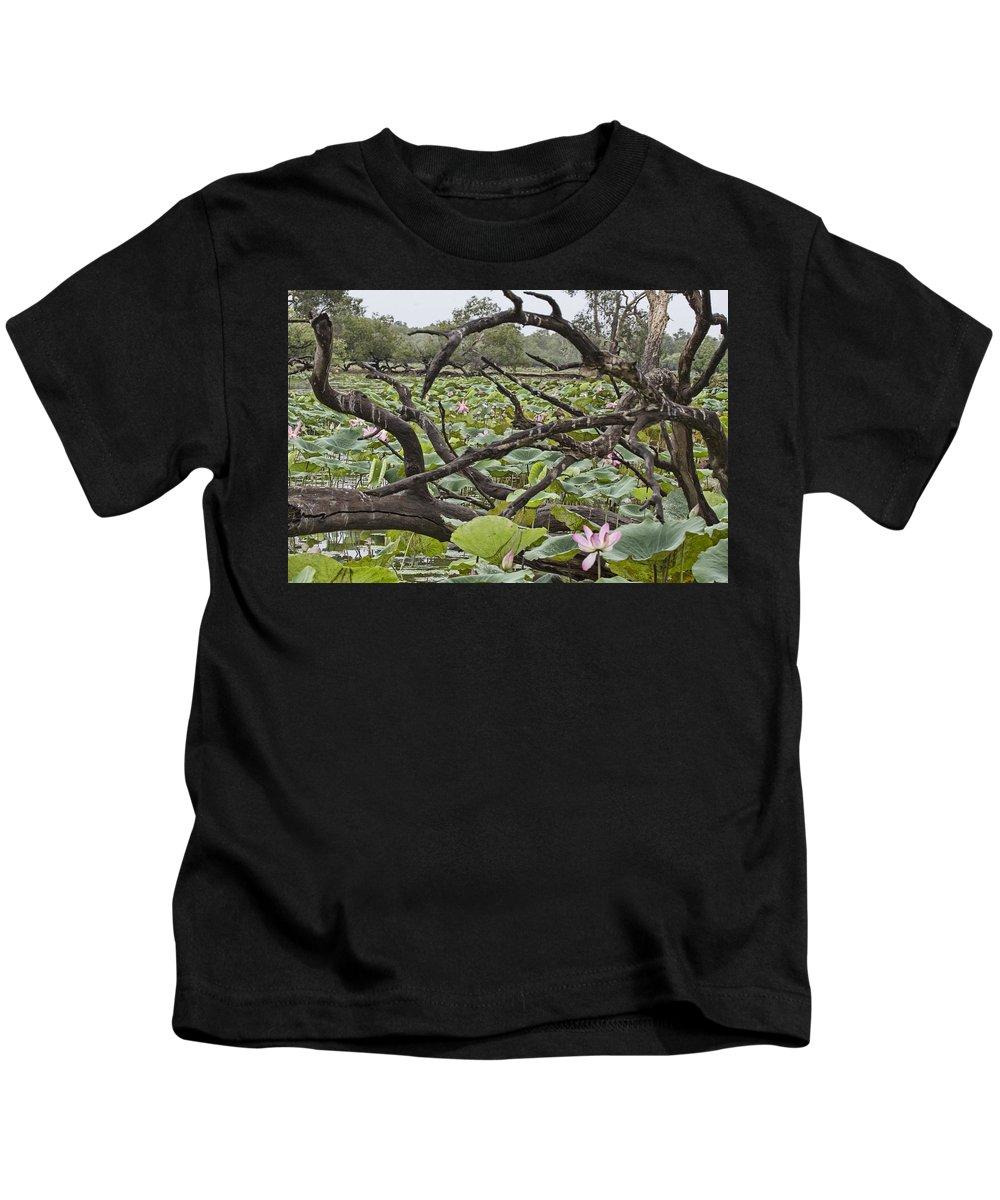 Corroboree Billabong Kids T-Shirt featuring the photograph Fallen Tree by Douglas Barnard