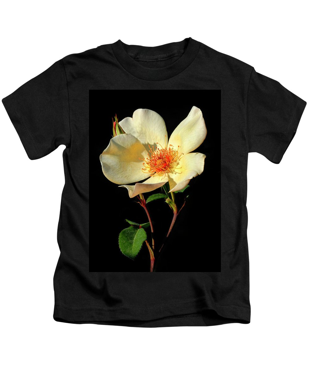 Rose Kids T-Shirt featuring the photograph Five Petal Rose by Dave Mills