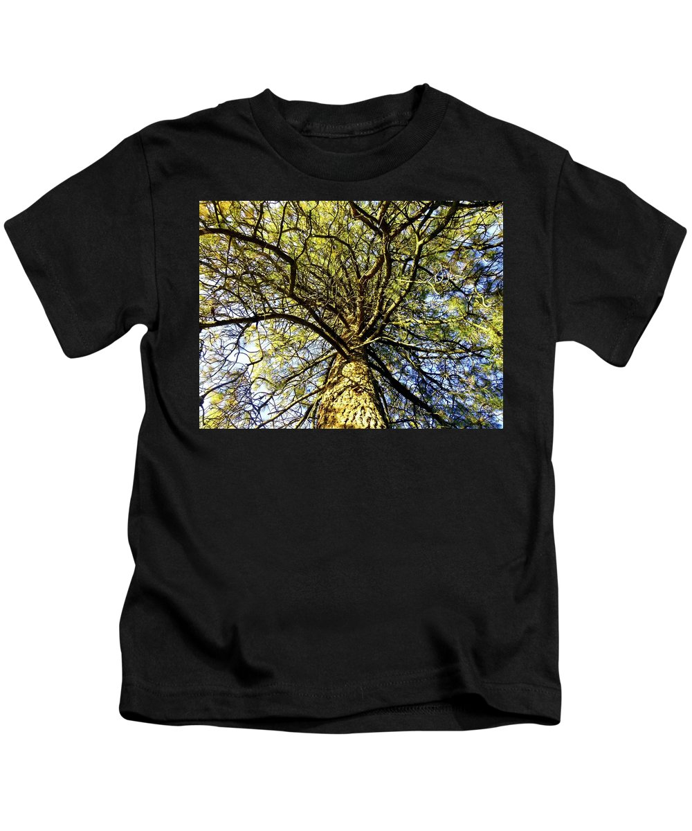 Pine Tree Kids T-Shirt featuring the photograph Stalwart Pine Tree by Will Borden