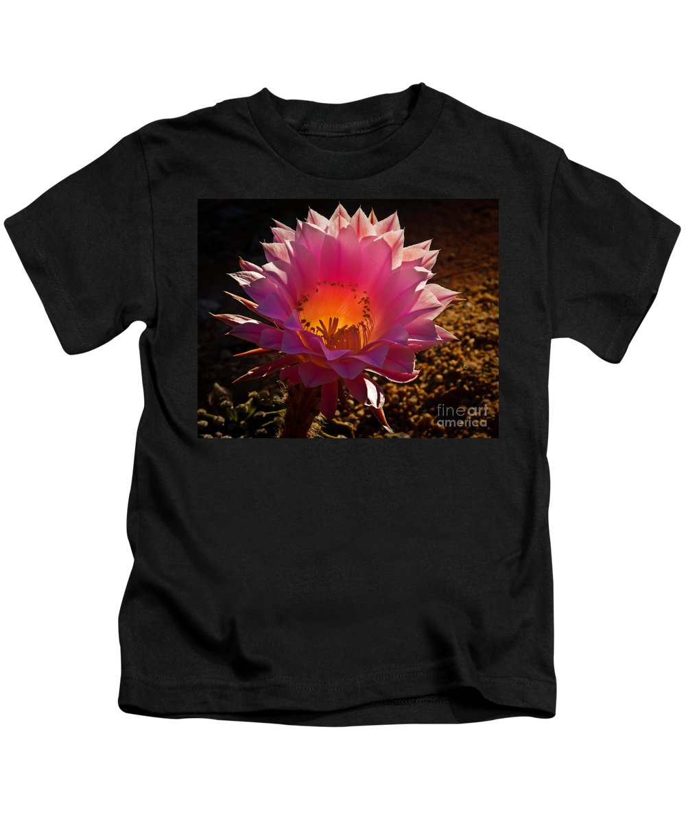 Cactus Flower Kids T-Shirt featuring the photograph The Pink One by Robert Bales