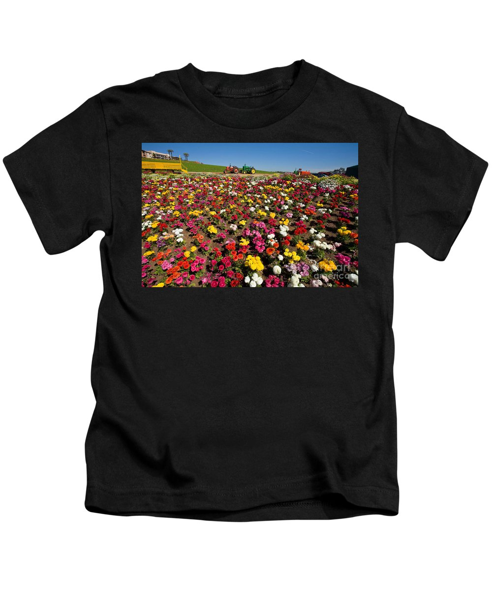 Flowers Kids T-Shirt featuring the photograph Flower Fields by Daniel Knighton