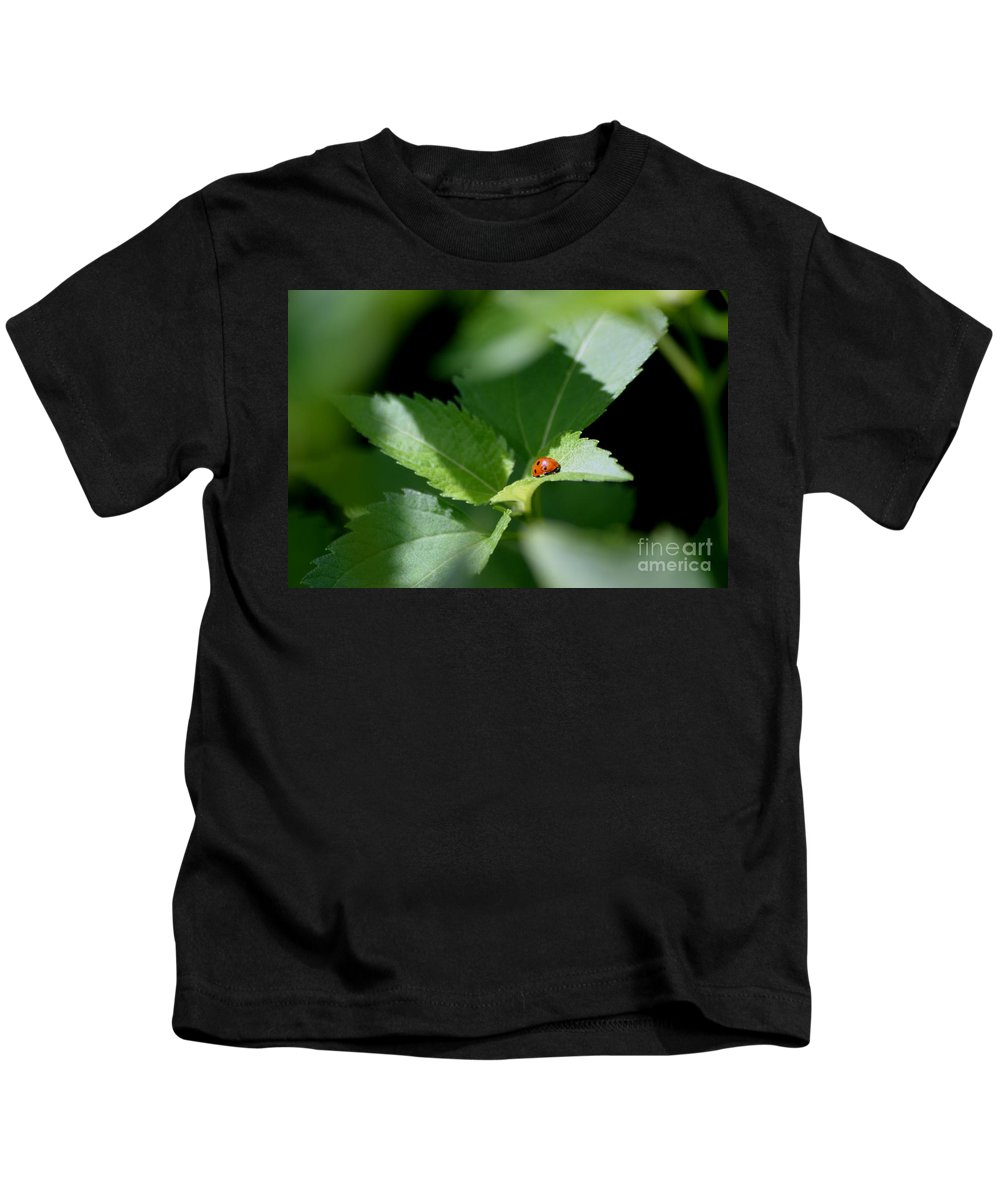 Lady Bug Kids T-Shirt featuring the photograph A Lady At Rest by Living Color Photography Lorraine Lynch