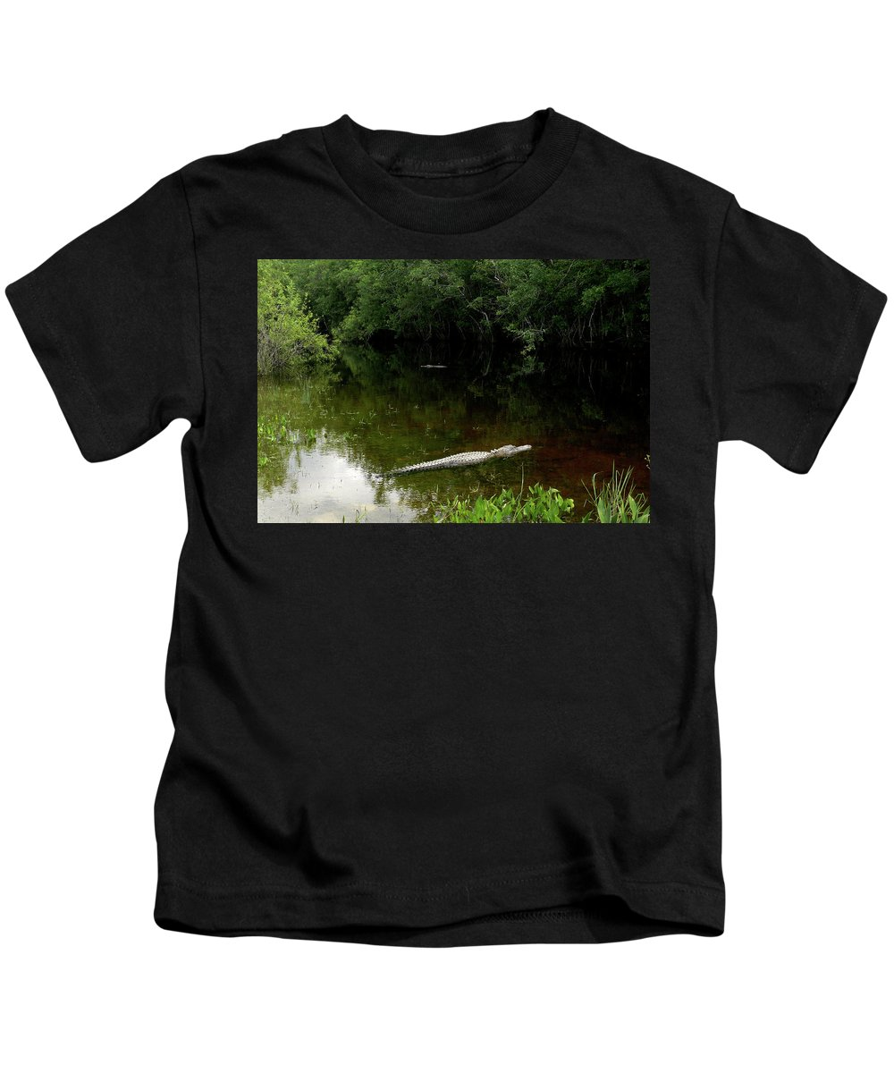 Alligators Kids T-Shirt featuring the photograph Alligators In The Evergaldes by HD Hasselbarth