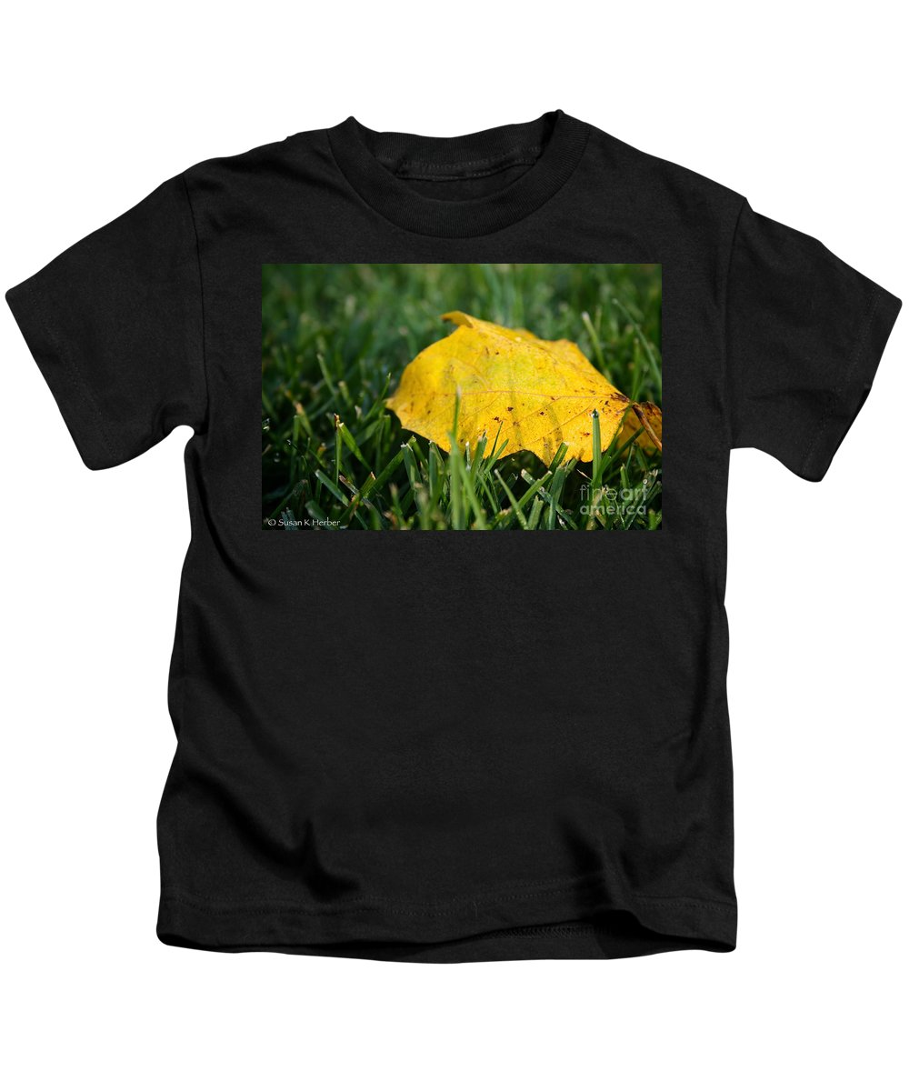 Outdoors Kids T-Shirt featuring the photograph Aspen Leaf by Susan Herber