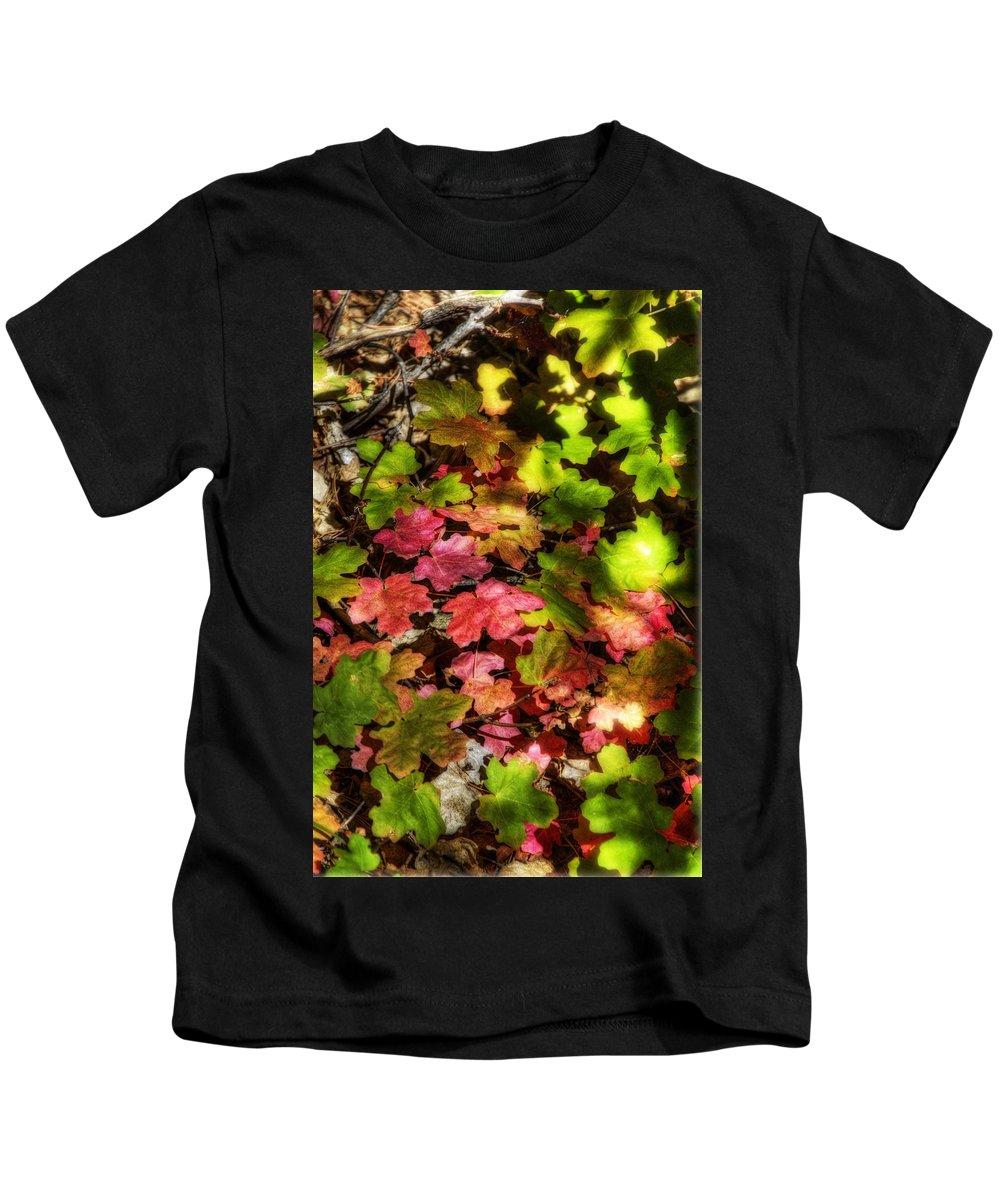 Autumn Kids T-Shirt featuring the photograph Autumn Rainbow by Saija Lehtonen