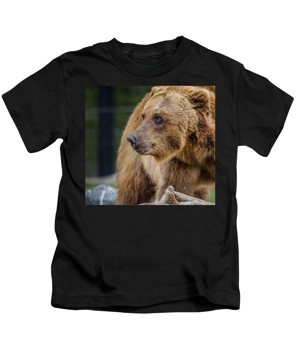 Grizzly Bear Kids T-Shirt featuring the photograph Bearing With It by Greg Nyquist