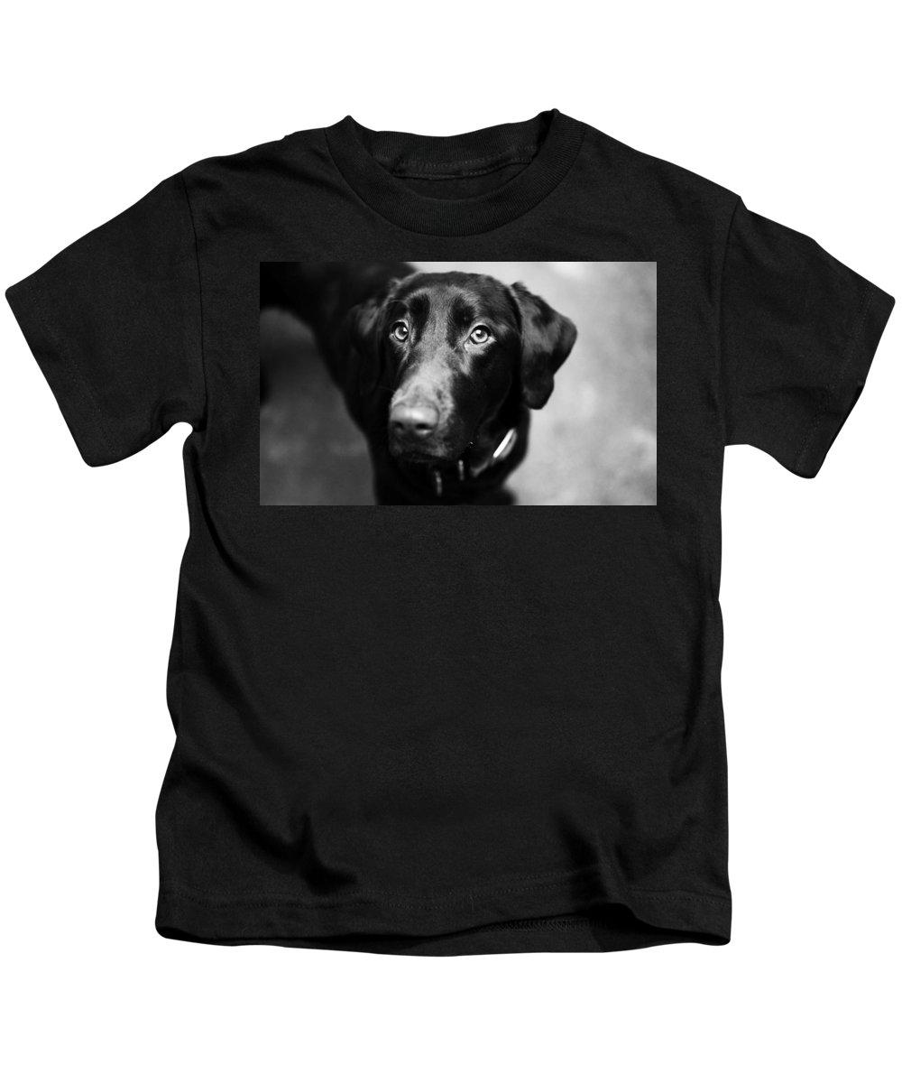 Dog Kids T-Shirt featuring the photograph Black Labrador by Sumit Mehndiratta
