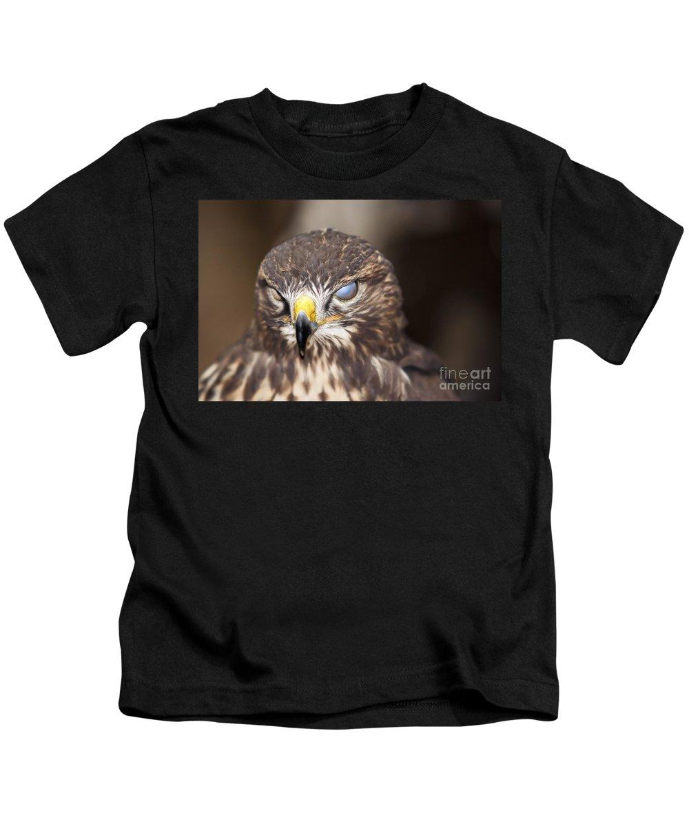 Buzzard Kids T-Shirt featuring the photograph Blind Buzzard by Michal Boubin
