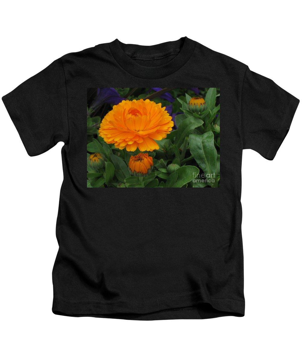 Flower Kids T-Shirt featuring the photograph Blooming Gold by Heather Kirk
