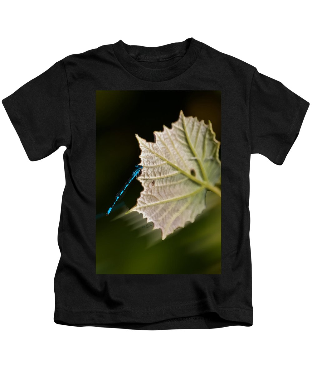 Dragonfly Kids T-Shirt featuring the photograph Blue Damsel On Leaf by DigiArt Diaries by Vicky B Fuller