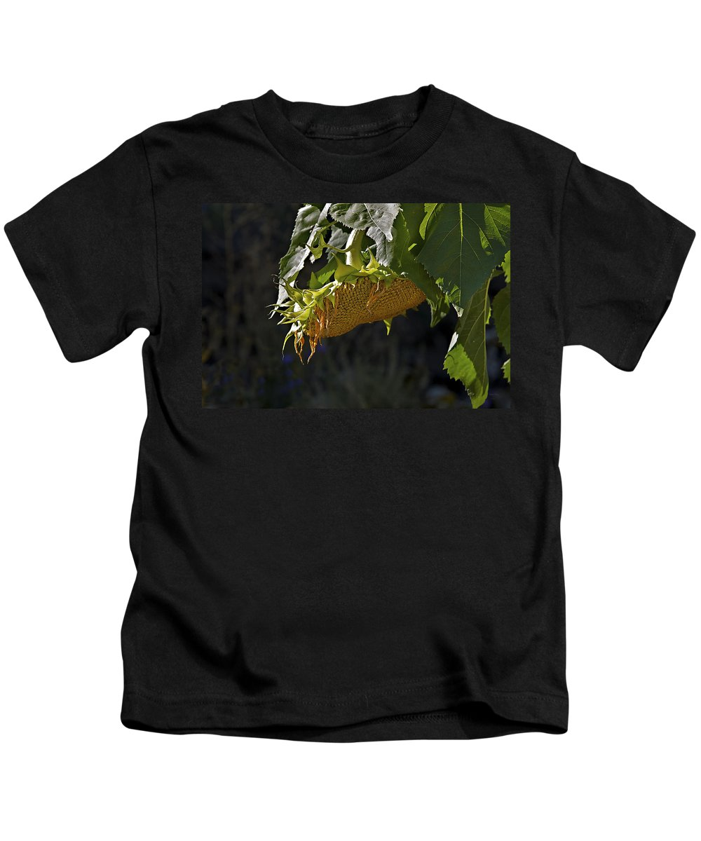 Sunflower Kids T-Shirt featuring the photograph Bowed Head by Phyllis Denton