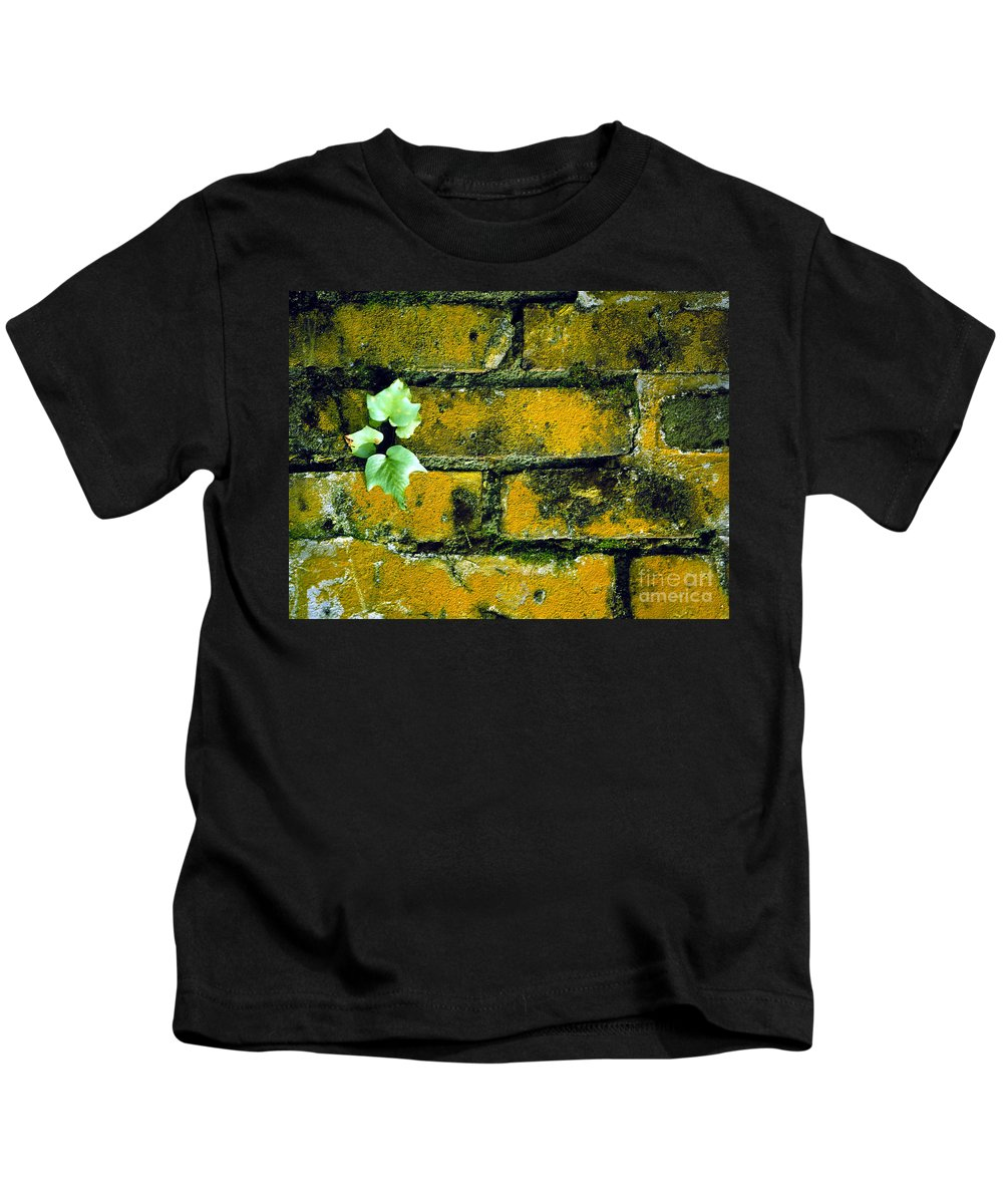Brick Kids T-Shirt featuring the photograph Brick Ivy by Mike Nellums