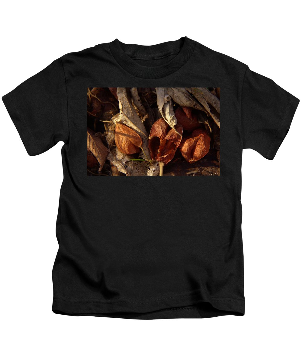 Broken Hearts Kids T-Shirt featuring the photograph Broken Hearts by Ed Smith