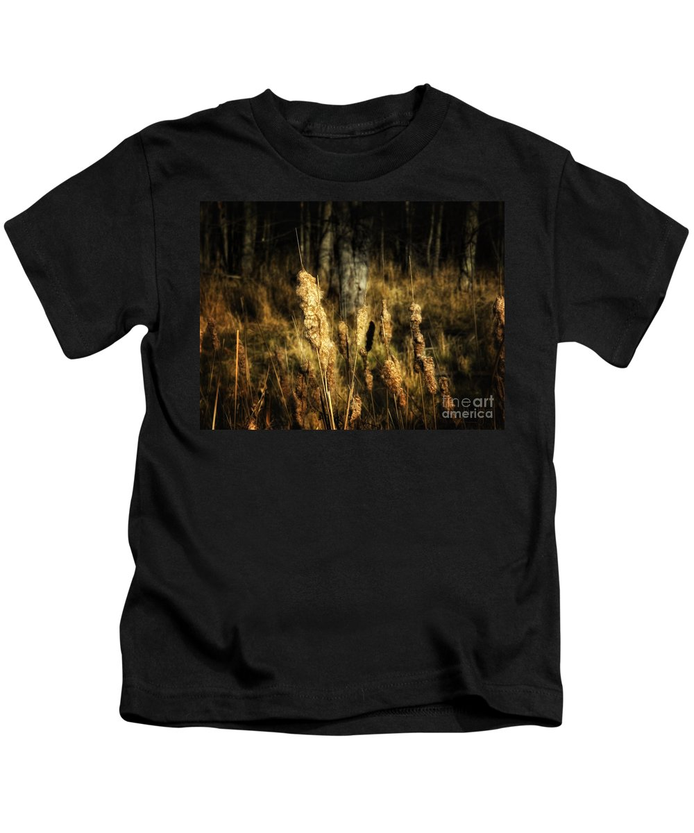Acrylic Prints Kids T-Shirt featuring the photograph Bullrushes To Seed by John Herzog