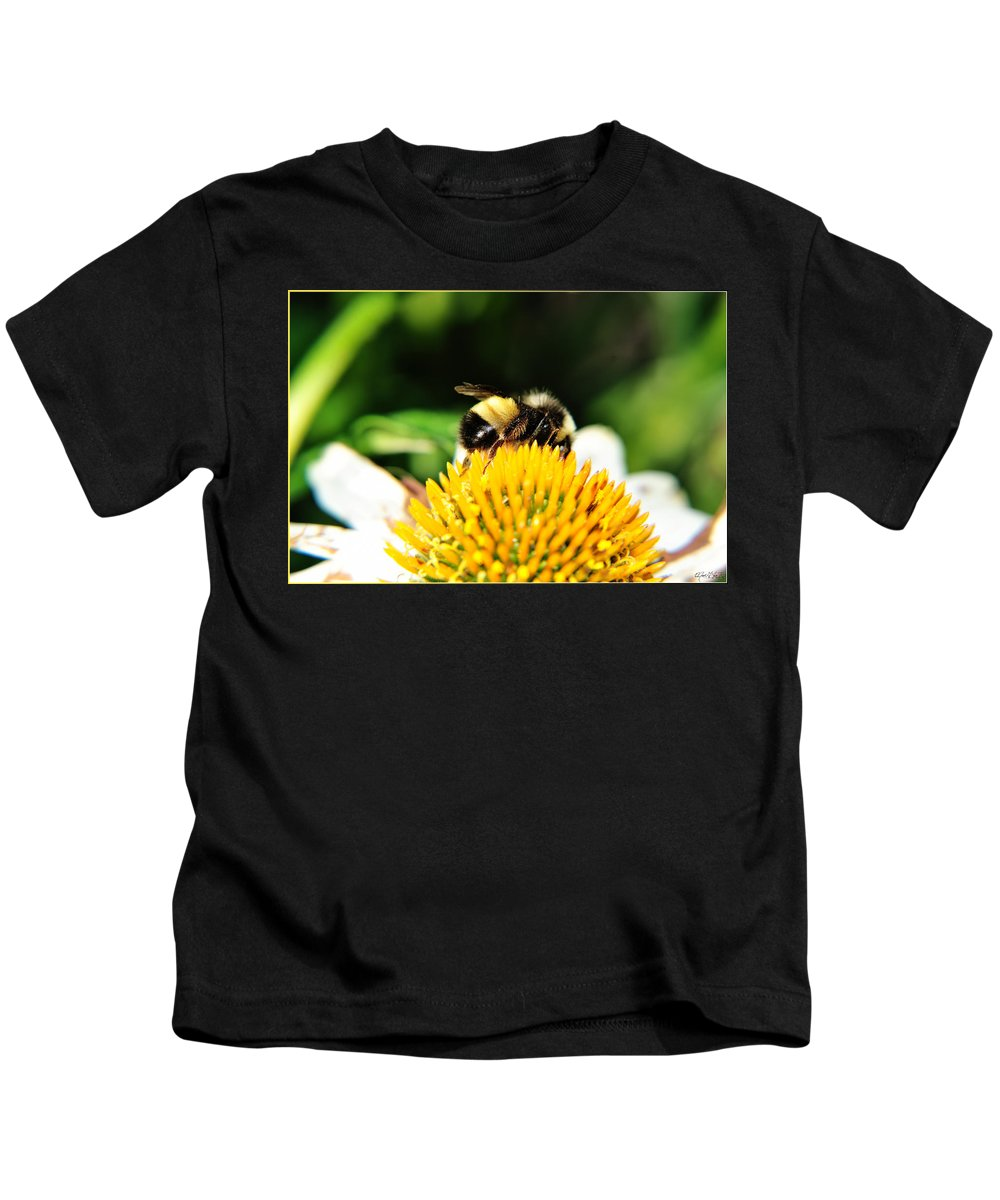 Kids T-Shirt featuring the photograph Busy Bee Collecting On Echinacea Pow Wow by Michael Frank Jr