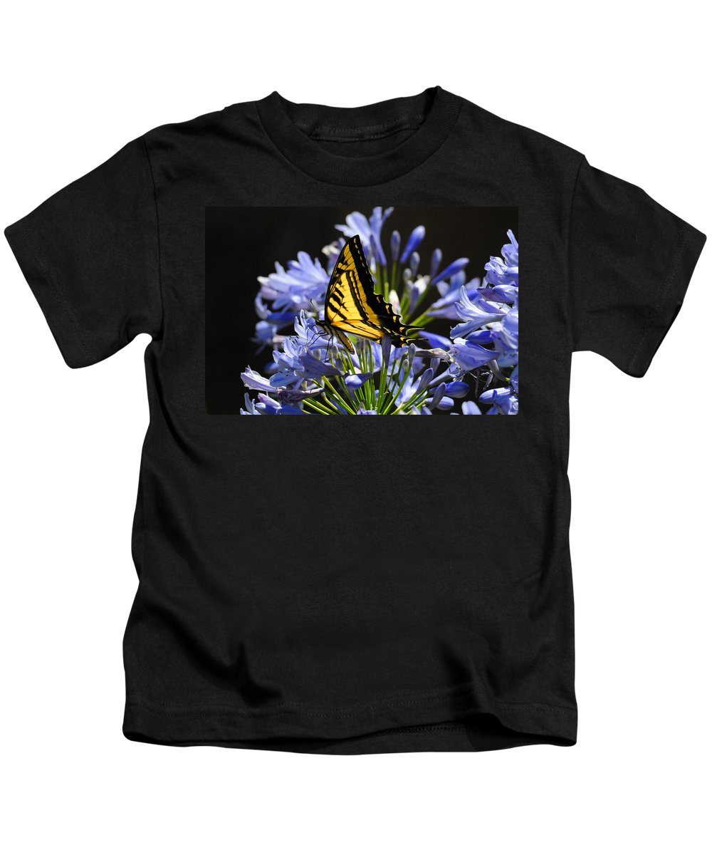 Butterflies Kids T-Shirt featuring the photograph Butterfly Catcher by Lynn Bauer