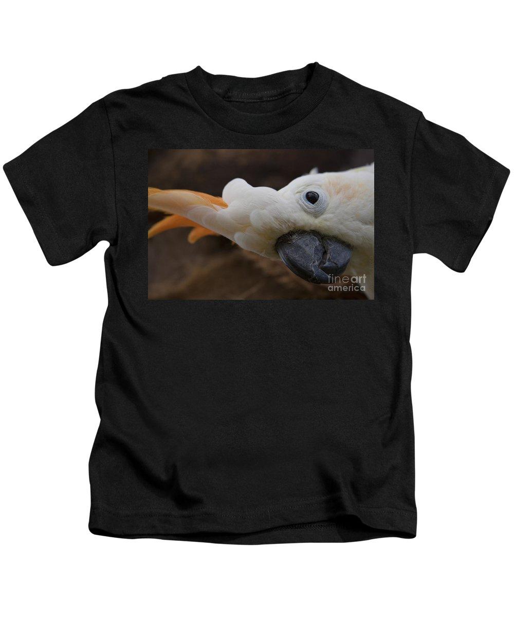 Aloha Kids T-Shirt featuring the photograph Cacatua Sulphurea Citrinocristata - Citron Crested Cockatoo by Sharon Mau
