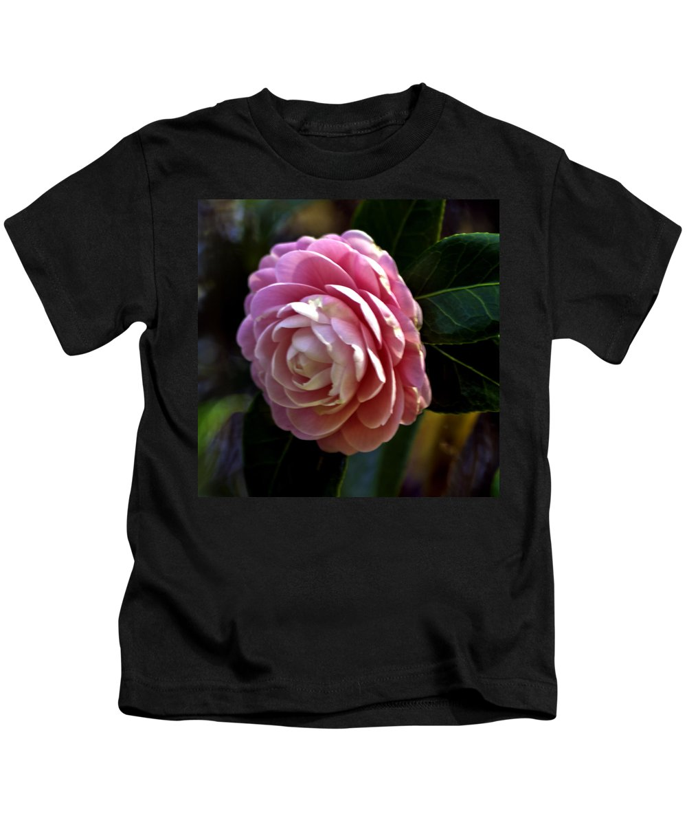 Camellia Kids T-Shirt featuring the photograph Camellia Twenty-three by Ken Frischkorn