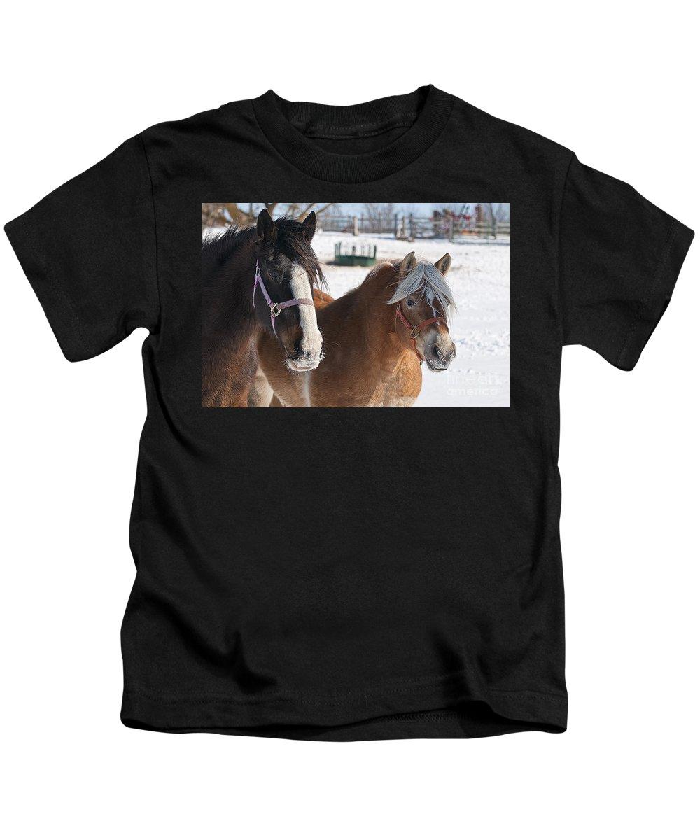 Michael Cummings Kids T-Shirt featuring the photograph Chums by Michael Cummings