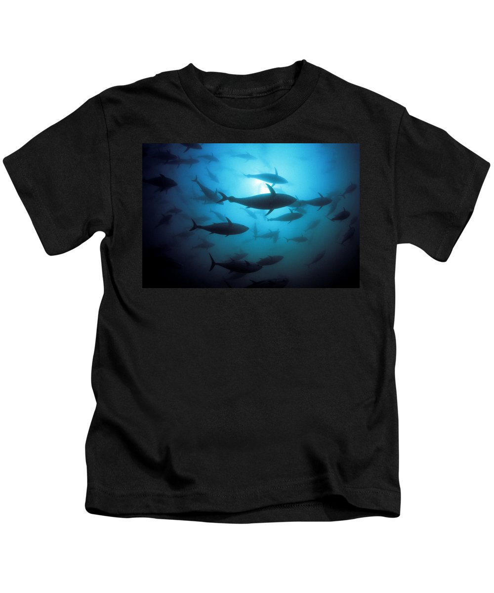 Animal Art Kids T-Shirt featuring the photograph Circling Bluefin Tuna by Dave Fleetham - Printscapes