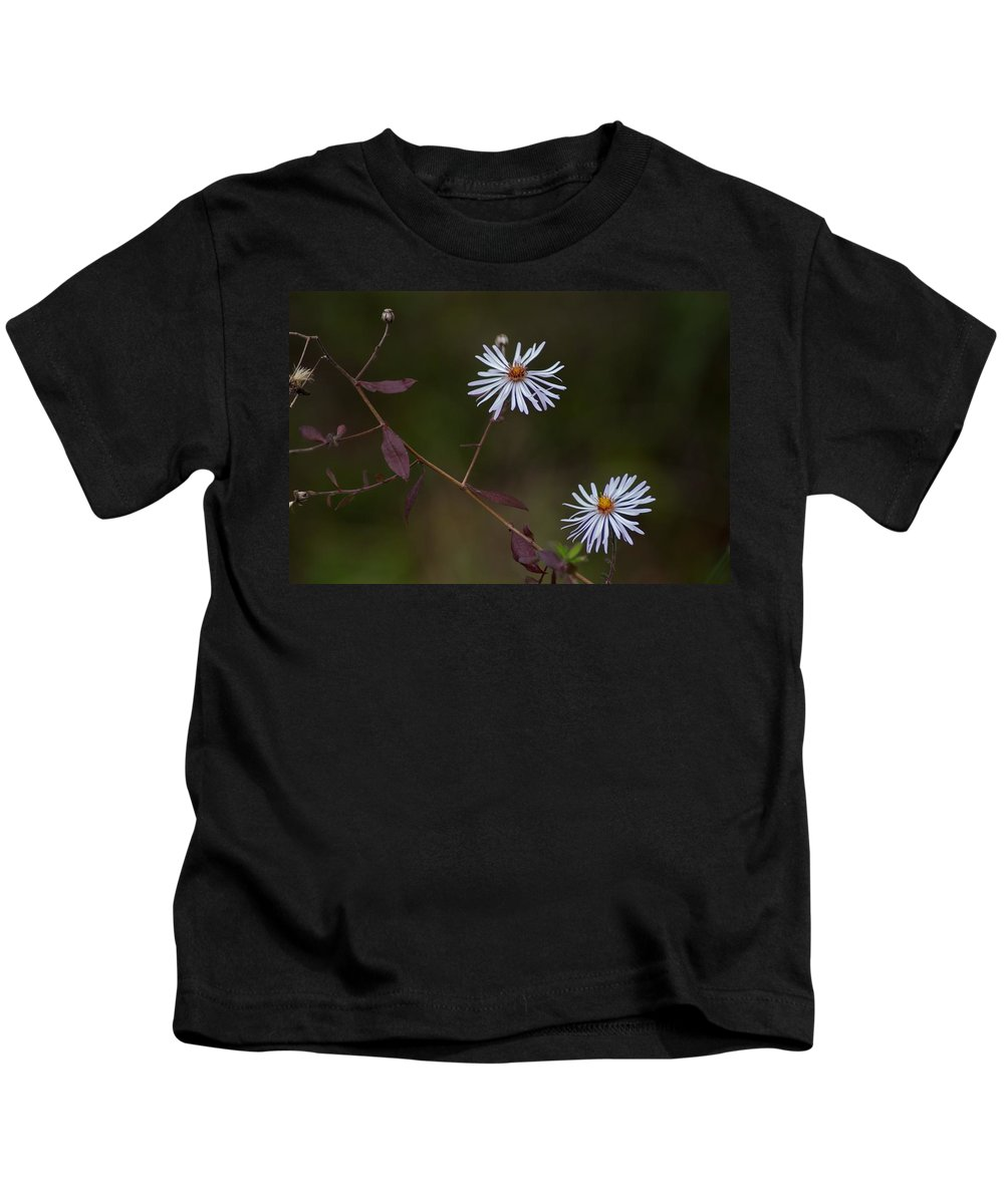 Aster Kids T-Shirt featuring the photograph Climbing Aster by Joseph Yarbrough