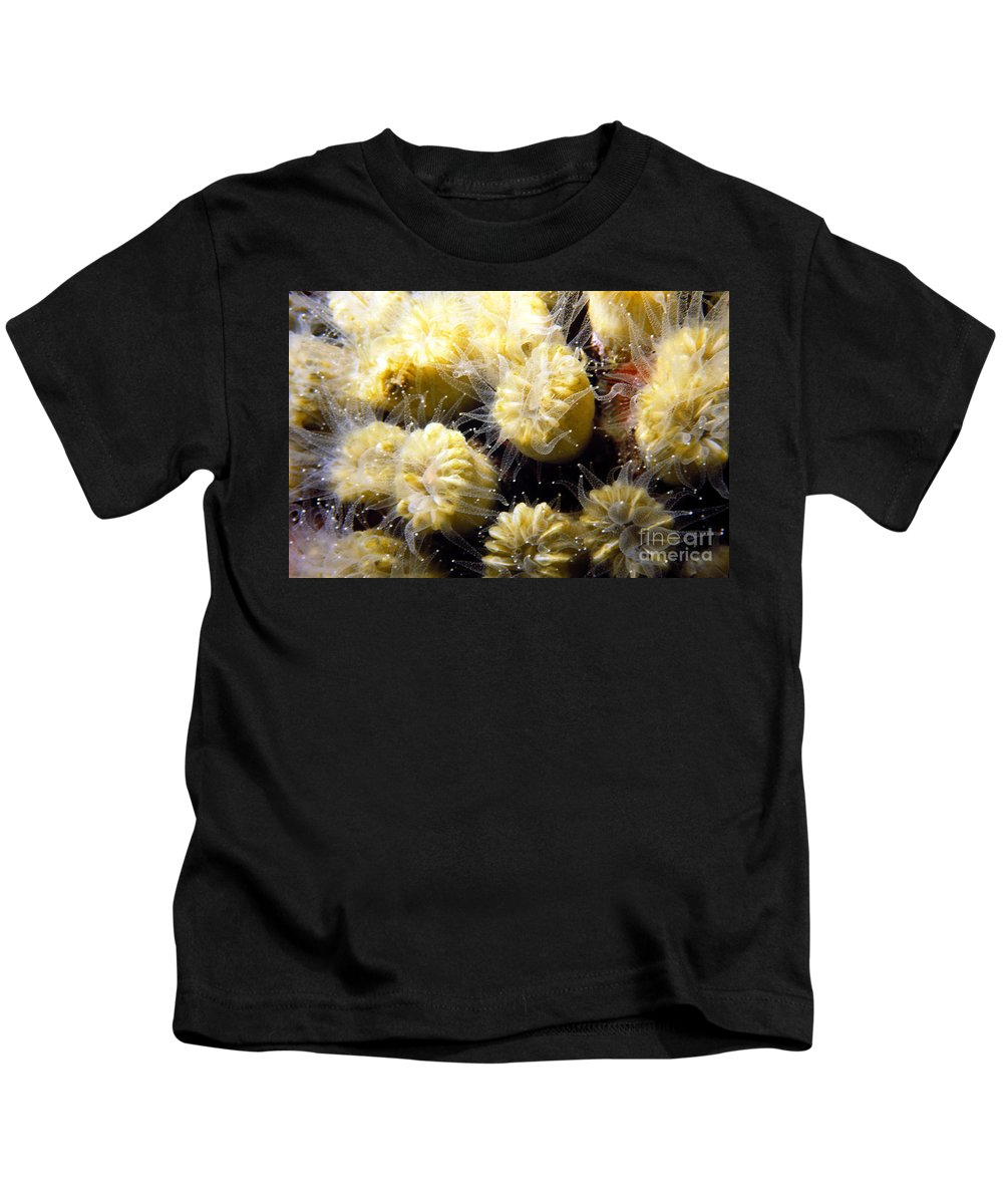 Coral Kids T-Shirt featuring the photograph Coral Life 3 by Mike Nellums